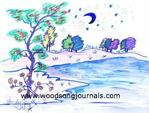 Moonlight by Sandy Jones